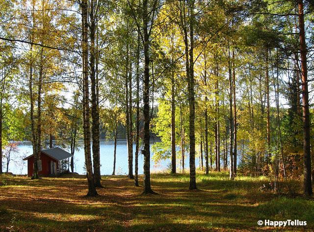 Photo 9 Forêt-Hyvinkää-Finlande,-copyright-HappyTellus
