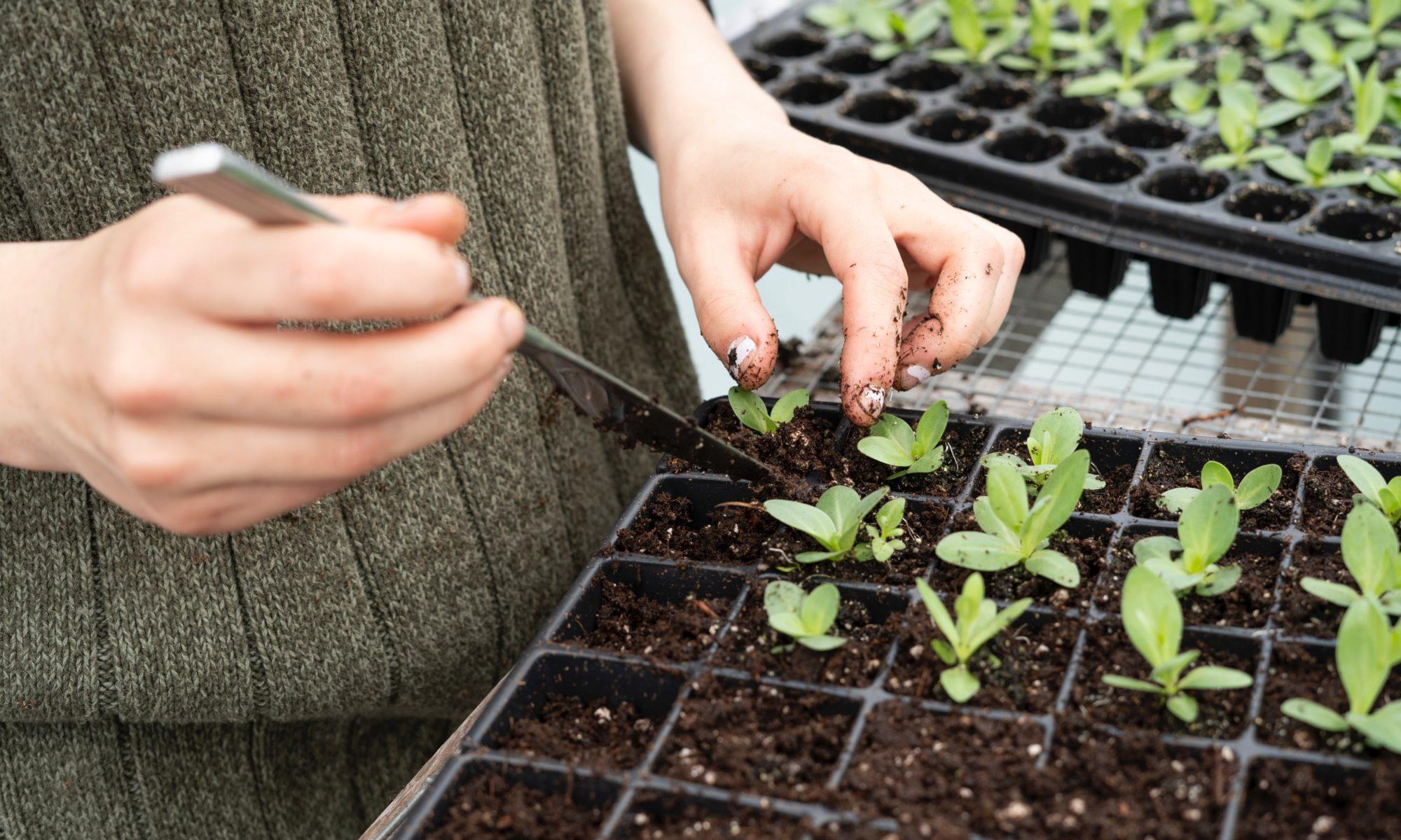 agriculture-bio